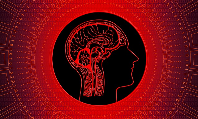 感情のコントロールをする為に大切な5つの思考法。